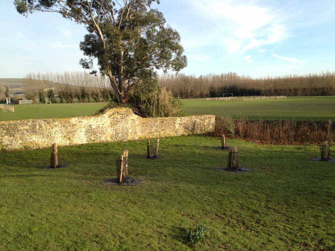 The new Priory Orchard contains traditional Sussex apple varieties